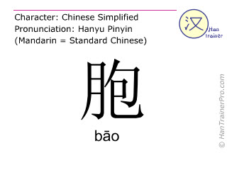 Chinese characters  ( bao / bāo ) with pronunciation (English translation: placenta )