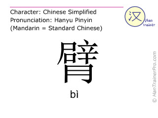 Chinese characters  ( bi / bì ) with pronunciation (English translation: arm )