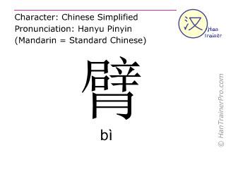 Caracteres chinos  ( bi / bì ) con pronunciación (traducción española: brazo )