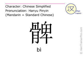 Chinese characters  ( bi / bì ) with pronunciation (English translation: thigh )