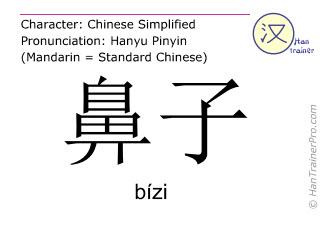Chinesische Schriftzeichen  ( bizi / bízi ) mit Aussprache (Deutsche Bedeutung: Nase )