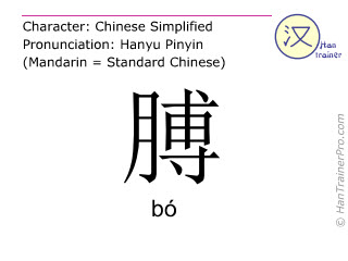 Chinese characters  ( bo / bó ) with pronunciation (English translation: arm )