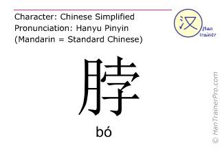 Caractère chinois  ( bo / bó ) avec prononciation (traduction française: cou )