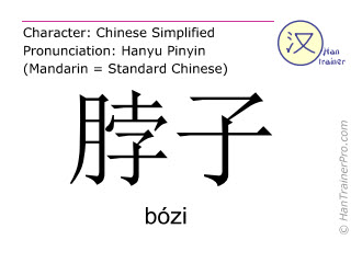 Chinese characters  ( bozi / bózi ) with pronunciation (English translation: neck )