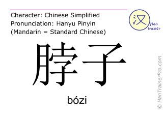 Caracteres chinos  ( bozi / bózi ) con pronunciación (traducción española: cuello )