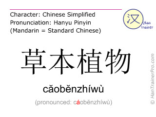 Chinese characters  ( caobenzhiwu / căobĕnzhíwù ) with pronunciation (English translation: herb )
