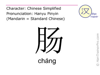 Chinese characters  ( chang / cháng ) with pronunciation (English translation: sausage )