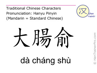 Chinese characters  ( da chang shu / dà cháng shù ) with pronunciation (English translation: Bladder 25 )