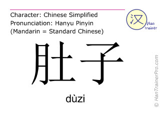 Chinese characters  ( duzi / dùzi ) with pronunciation (English translation: belly )