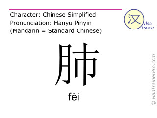 Chinese characters  ( fei / fèi ) with pronunciation (English translation: lung )
