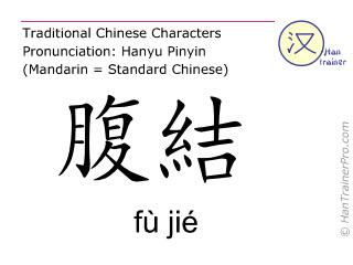 Chinesische Schriftzeichen  ( fu jie / fù jié ) mit Aussprache (Deutsche Bedeutung: Milz 14 )