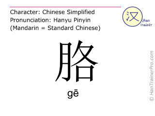Chinese characters  ( ge / g&#275 ) with pronunciation (English translation: <m>armpit</m> )