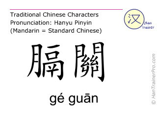 Chinese characters  ( ge guan / gé guān ) with pronunciation (English translation: Bladder 46 )