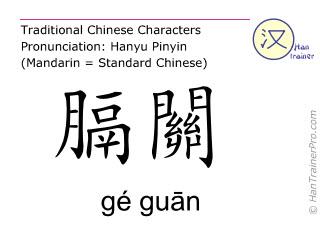 Chinesische Schriftzeichen  ( ge guan / gé guān ) mit Aussprache (Deutsche Bedeutung: Blase 46 )