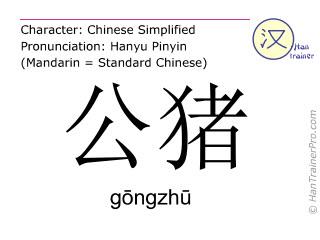 Caractère chinois  ( gongzhu / gōngzhū ) avec prononciation (traduction française: sanglier )