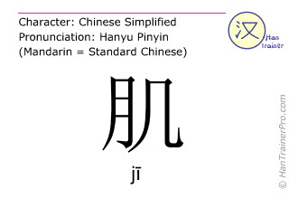 Chinese characters  ( ji / j&#299 ) with pronunciation (English translation: muscle )