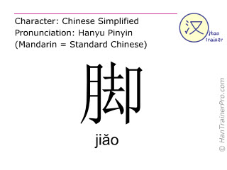 Chinese characters  ( jiao / jiăo ) with pronunciation (English translation: foot )