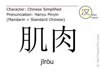 Chinesische Schriftzeichen  ( jirou / jīròu ) mit Aussprache (Deutsche Bedeutung: Muskel )