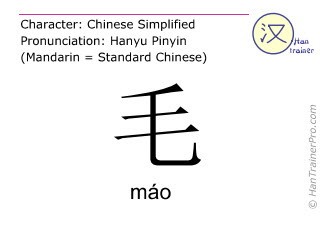 Chinese characters  ( mao / máo ) with pronunciation (English translation: hair )