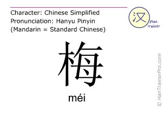 Chinese characters  ( mei / méi ) with pronunciation (English translation: plum )