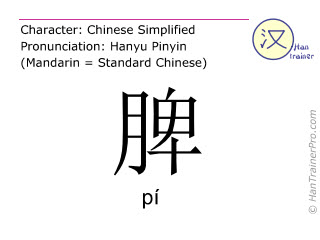 Chinese characters  ( pi / pí ) with pronunciation (English translation: spleen )