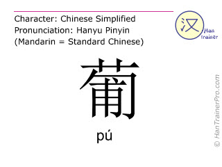 Chinese characters  ( pu / p&uacute; ) with pronunciation (English translation: <m>grape</m> )