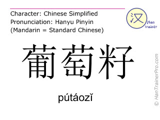 Chinese characters  ( putaozi / pútáozĭ ) with pronunciation (English translation: grape seed )