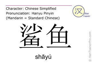 Chinesische Schriftzeichen  ( shayu / shāyú ) mit Aussprache (Deutsche Bedeutung: Hai )