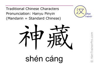 Chinesische Schriftzeichen  ( shen cang / shén cáng ) mit Aussprache (Deutsche Bedeutung: Niere 25 )
