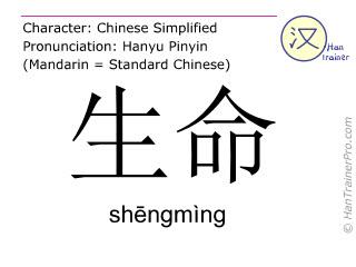汉字  ( shengming / shēngmìng ) 包括发音 (英文翻译: life )