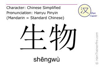 Chinesische Schriftzeichen  ( shengwu / shēngwù ) mit Aussprache (Deutsche Bedeutung: Organismus )