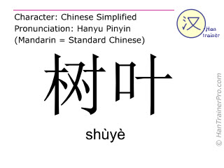 Chinese characters  ( shuye / shùyè ) with pronunciation (English translation: leaf )