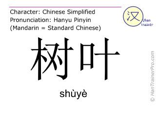 Caractère chinois  ( shuye / shùyè ) avec prononciation (traduction française: feuille )