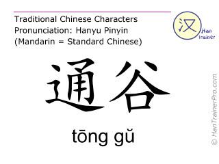 Chinesische Schriftzeichen  ( tong gu / tōng gŭ ) mit Aussprache (Deutsche Bedeutung: Niere 20 )