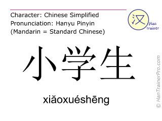 Chinese characters  ( xiaoxuesheng / xiăoxuéshēng ) with pronunciation (English translation: pupil )