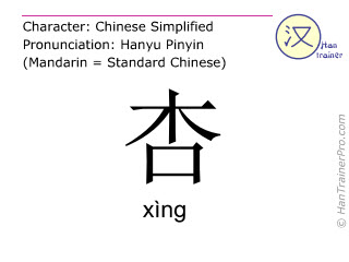 Chinese characters  ( xing / xìng ) with pronunciation (English translation: apricot )