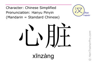 Chinesische Schriftzeichen  ( xinzang / xīnzàng ) mit Aussprache (Deutsche Bedeutung: Herz )