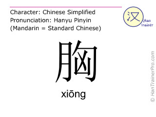 Chinese characters  ( xiong / xiōng ) with pronunciation (English translation: chest )