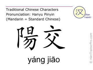 Chinesische Schriftzeichen  ( yang jiao / yáng jiāo ) mit Aussprache (Deutsche Bedeutung: Gallenblase 35 )