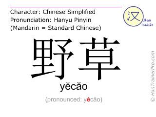 汉字  ( yecao / yĕcăo ) 包括发音 (英文翻译: weed )