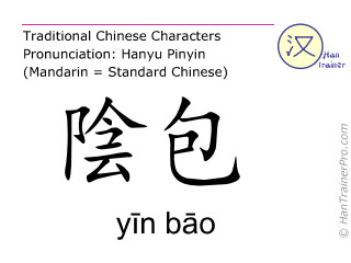 Chinesische Schriftzeichen  ( yin bao / yīn bāo ) mit Aussprache (Deutsche Bedeutung: Leber 9 )