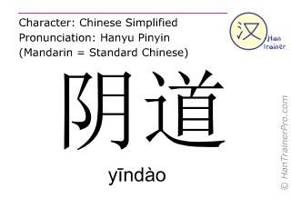 Chinese characters  ( yindao / y&#299ndào ) with pronunciation (English translation: vagina )