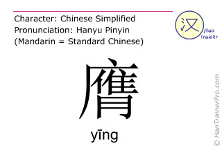 Chinese characters  ( ying / yīng ) with pronunciation (English translation: <m>breast</m> )