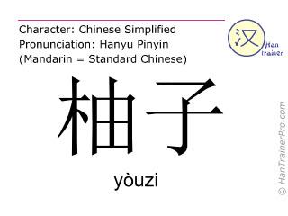 汉字  ( youzi / yòuzi ) 包括发音 (英文翻译: pomelo )