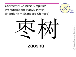 Chinese characters  ( zaoshu / zăoshù ) with pronunciation (English translation: jujube tree )