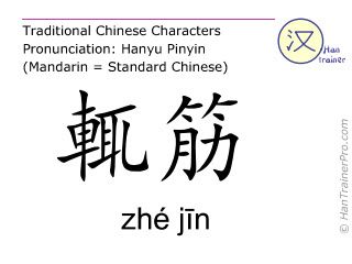 Chinese characters  ( zhe jin / zhé jīn ) with pronunciation (English translation: Gall Bladder 23 )