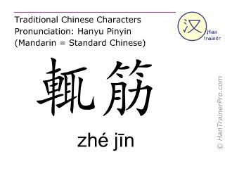 Chinese characters  ( zhe jin / zhé jīn ) with pronunciation (English translation: Gall Bladder 23 )