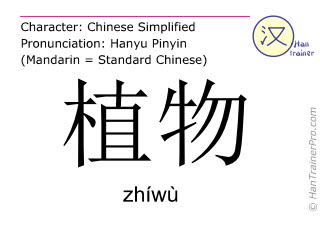 Chinese characters  ( zhiwu / zhíwù ) with pronunciation (English translation: plant )