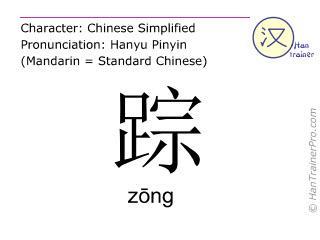 汉字  ( zong / zōng ) 包括发音 (英文翻译: footprint )